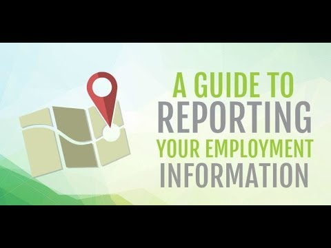 A Guide on How to Report Your Employment Information