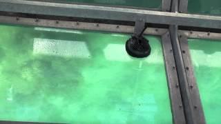Fitzroy Island - Glass Bottom Boat