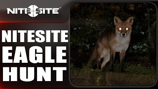 Night Vision Fox Hunting with the NiteSite Eagle