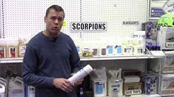 You CAN get rid of scorpions