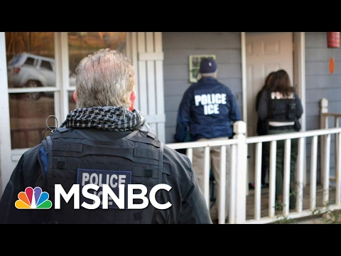 Immigration Expert On ICE Raids: