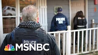 Immigration Expert On ICE Raids: 'Don't Panic Yet' | Morning Joe | MSNBC