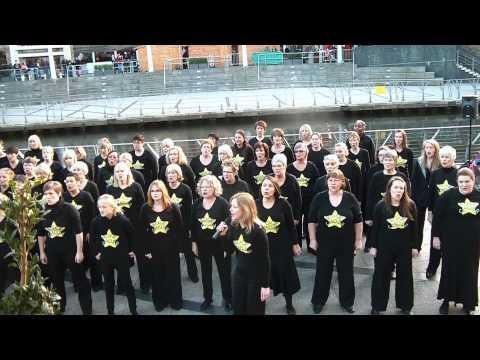 Fleet/Basingstoke/Wokingham Rock Choirs.