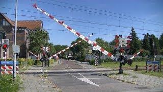 Spoorwegovergang Wijchen // Dutch railroad crossing