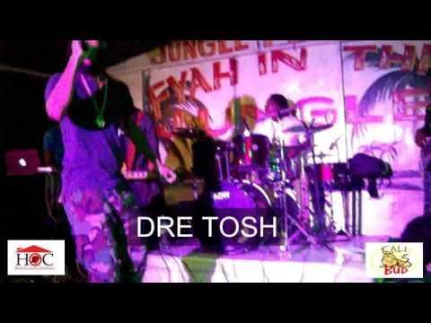 Dre Tosh Jungle Fyah Performance Feb 9th 2017