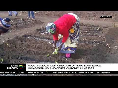Bushbuckridge women's vegetable garden changes lives