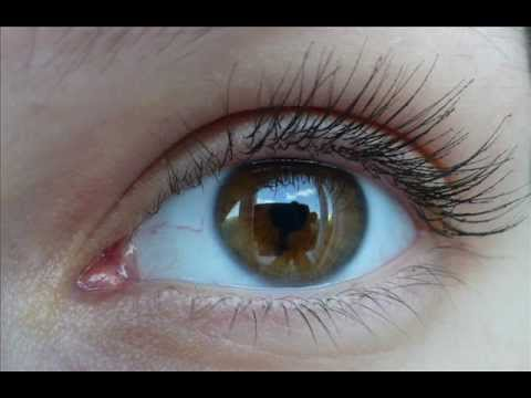 7c999ddd940 Mascara comparison - Max Factor False Lash Effect vs. 2000 Calorie ...