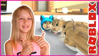 Hamster's Life / Becoming a Hamster in Roblox