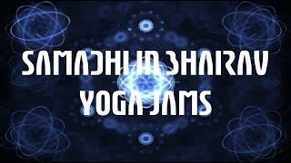 Samadhi in Bhairav - Psychedelic Sitar w Beatbuddy, KORG Wavedrum (Electric Sheep Fractal Visuals)