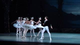 Смотреть видео Адажио из балета П.И.Чайковского