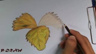How to Draw & Shade a Leaf - Sketching Practice Tutorial