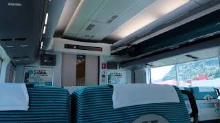 【いい音】E257系2000番台VVVF-IGBT特急踊り子車内