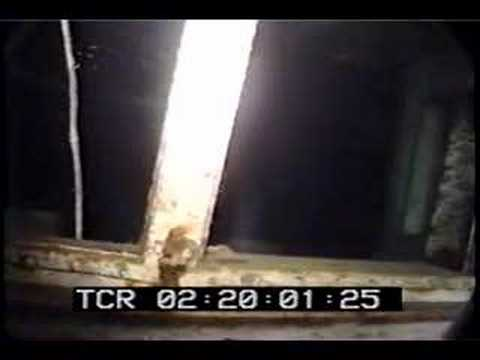 Edmund Fitzgerald Crewman Discovered - YouTube  |Edmund Fitzgerald Crew Remains