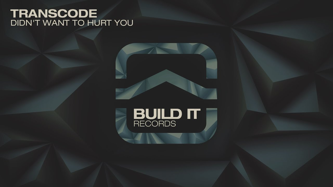 Transcode Didnt Want To Hurt You Build It Records Youtube
