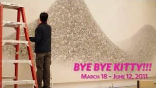 Interview with Makoto Aida - Bye Bye Kitty!!!