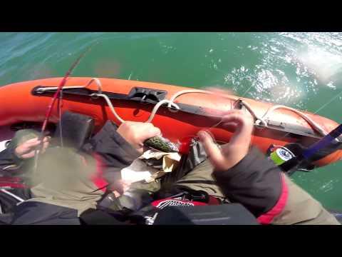 С Отцом на море в Ирландии. Mackrel Sea fishing in Greystones Ireland.