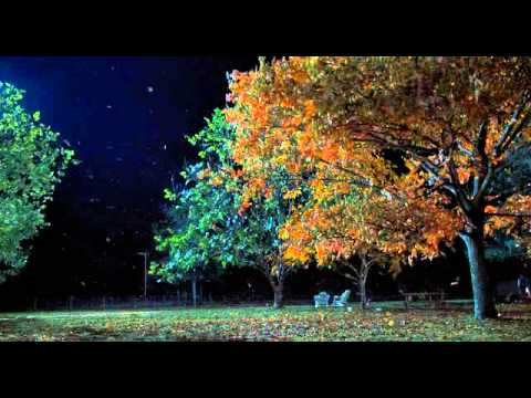 La extraña vida de Timothy Green - Trailer español
