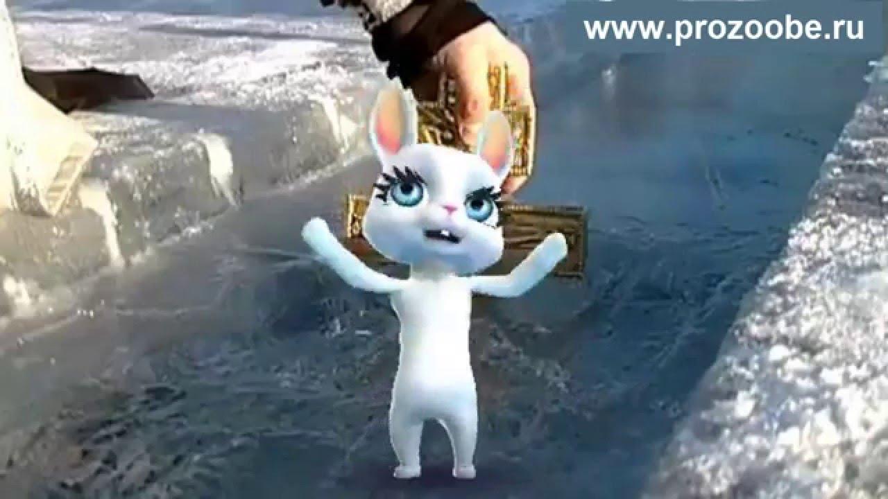поздравление с крещением заяц насыпаем основную