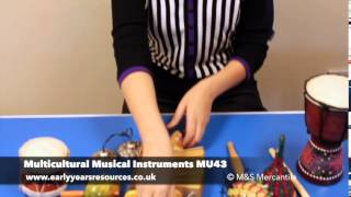 Multi-cultural Musical Instruments Set