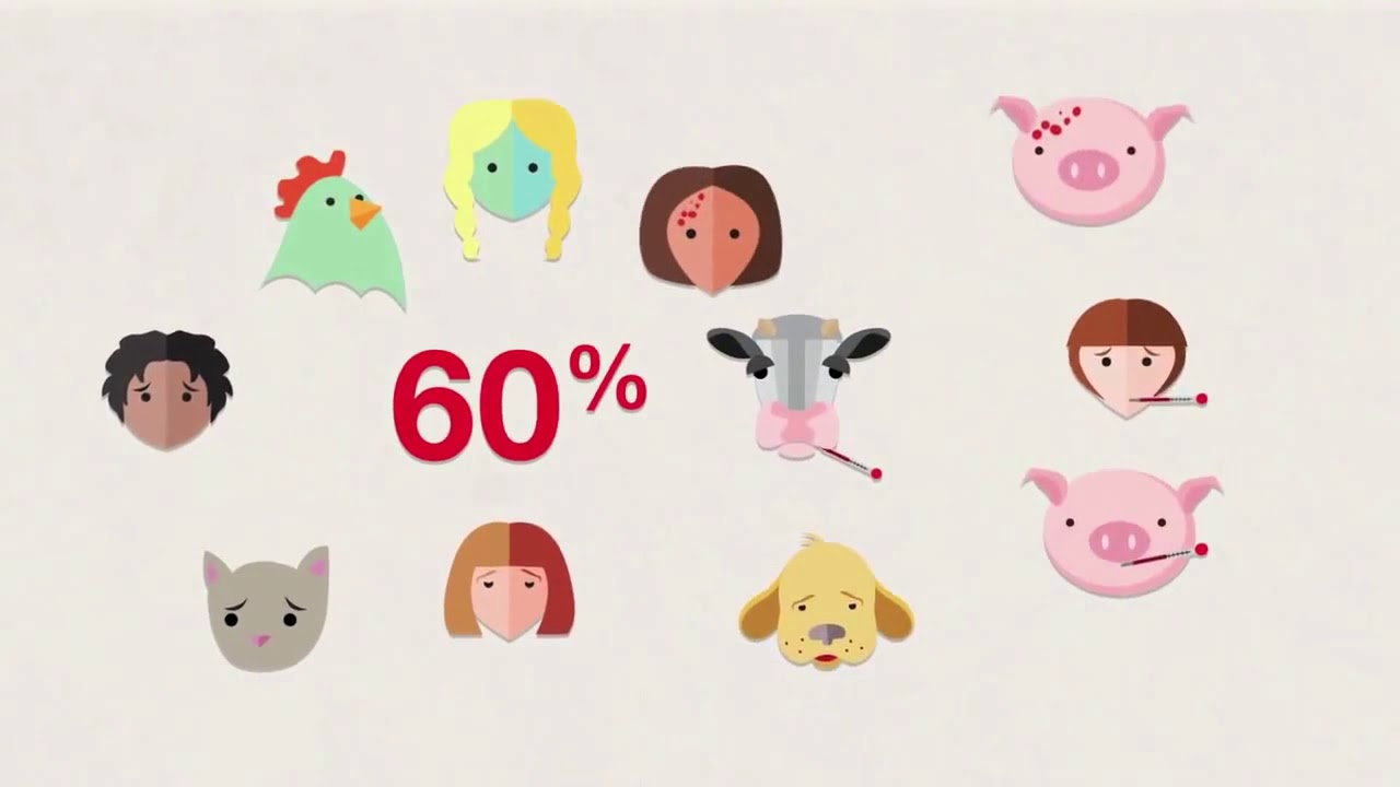 Los animales saludables contribuyen a un mundo mejor   from YouTube
