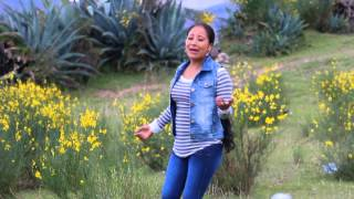 Mily Montes - Parranditas  Mix 2015 (full Hd) Primicias