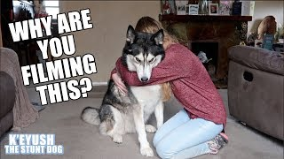 hugging-my-dog-for-too-long-subtitled