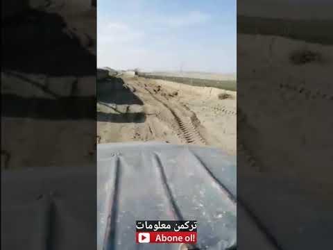 Desert visit in