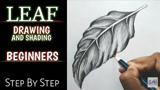 HOW TO DRAW AND SHADE A LEAF - Step By Step
