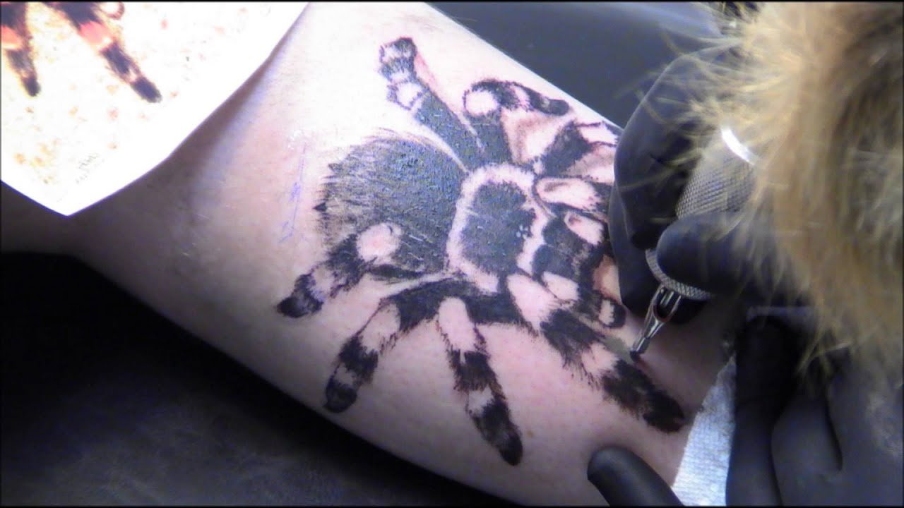 Derek 39 s mexican red kneed tarantula tattoo youtube for Queens of the stone age tattoo