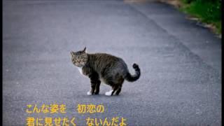 作詞:星野哲郎、作曲:臼井孝次、歌手:神野美伽、 帰れないんだよ.