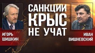 Смотреть видео И. Шишкин, И. Вишневский. Стратегический курс прозападной власти полностью провалился онлайн