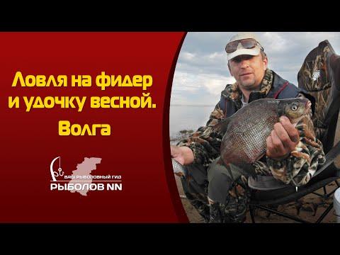 рыбалка по весне в нижегородской области