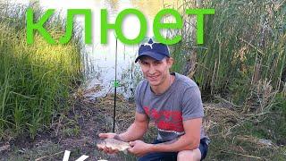 Рыбалка в Разумовке. Рыбалка в Запорожье на карася.