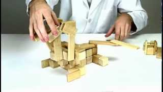 Magnetic Wooden Toys From Tegu - Building A Hydra