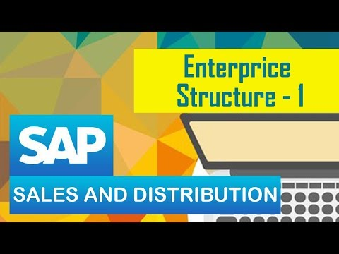 SAP  Sales & Distribution(SD) Module/Enterprise Structure (part 1) .
