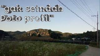 Sisi lain Korea Selatan (amatir vlog)