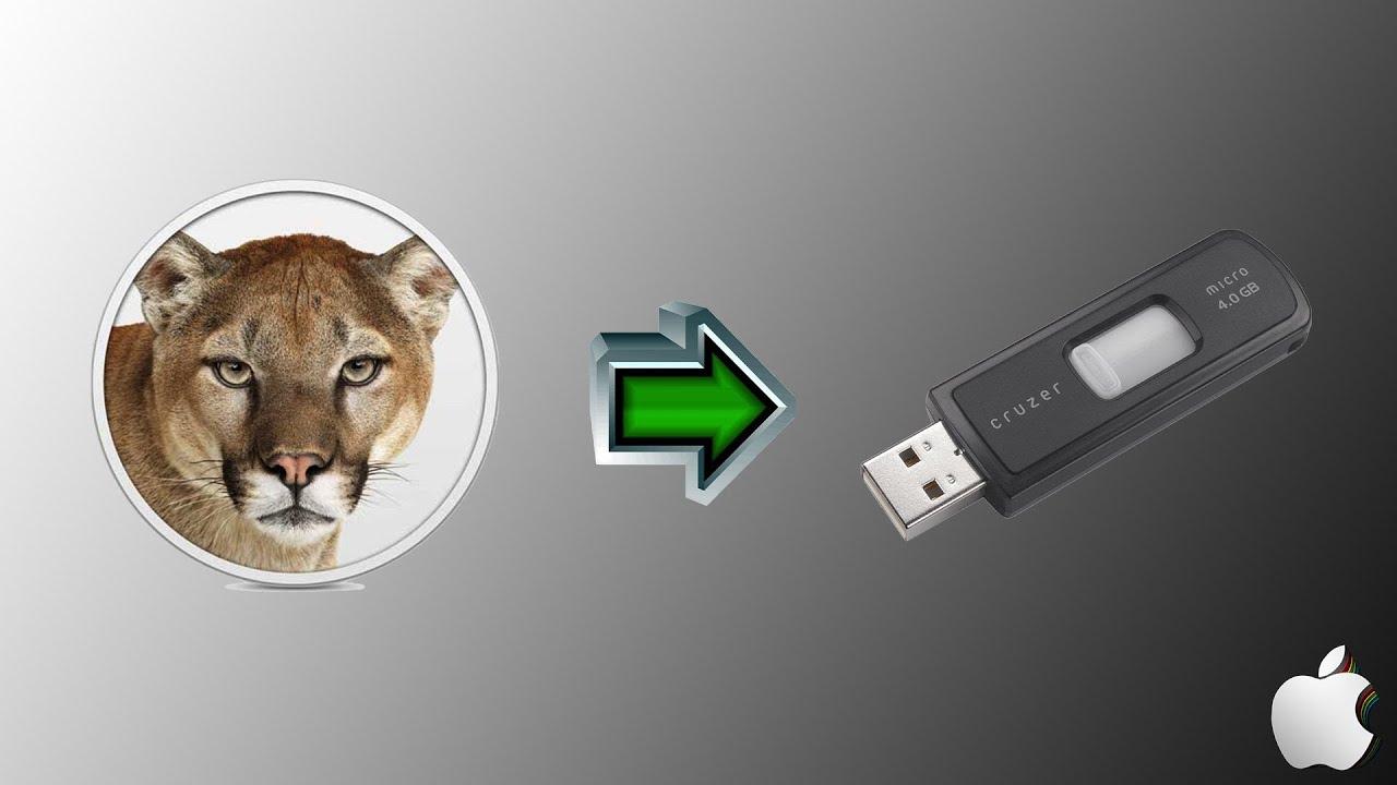 lion su chiavetta