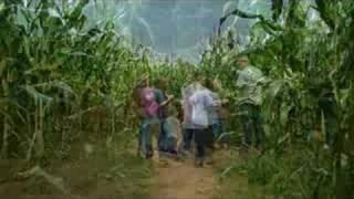 The Corn Maze ~ A Return To Innonence...