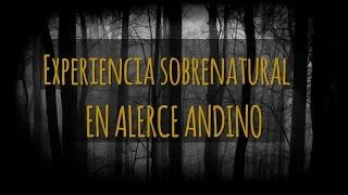 EXPERIENCIA SOBRENATURAL EN ALERCE ANDINO (HISTORIAS DE TERROR)