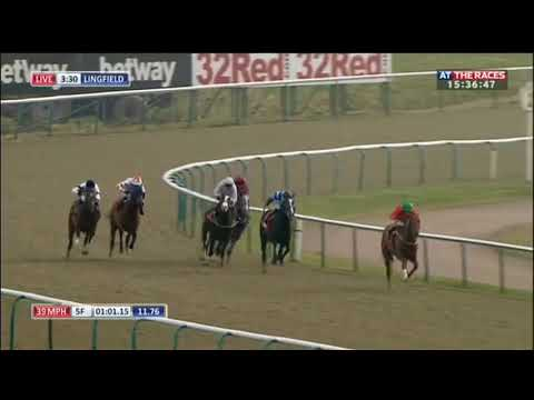Racehorse Shows Incredible Burst Of Speed
