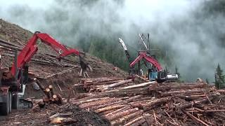 Primitive Technology vs Mega Machines. Sawmill Timber Tractor Truck Claw Crane Chainsaw Log Splitter
