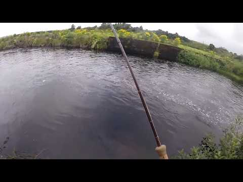 Summer Salmon In The West Of Ireland Spate River