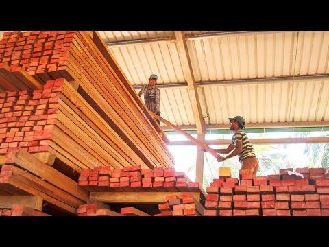 Wood-Mizer LT20 & LT40 sawmills improving timber profits in