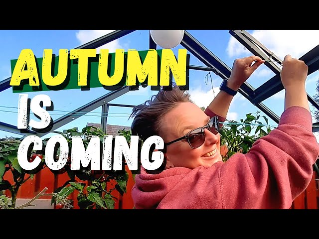 Preparing for Autumn in the Greenhouse
