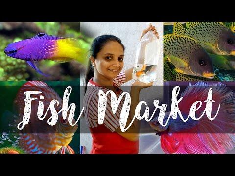 Crawford Market is Better Than Kurla Market / KURLA FISH MARKET EXPLORE