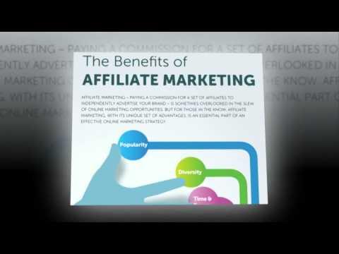 Affiliate marketing guide beginners