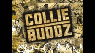 Collie Buddz - [ Collie Buddz ] Blind To You  HQ