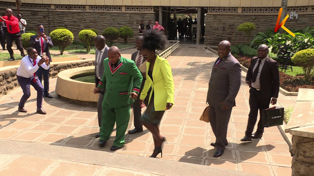 Akothee theatrics : Singer causes stir in parliament