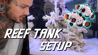 Setting up my new REEF TANK!