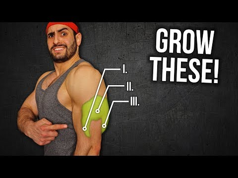 4 Exercise Triceps Workout For Mass (GROW YOUR HORSESHOE!!)